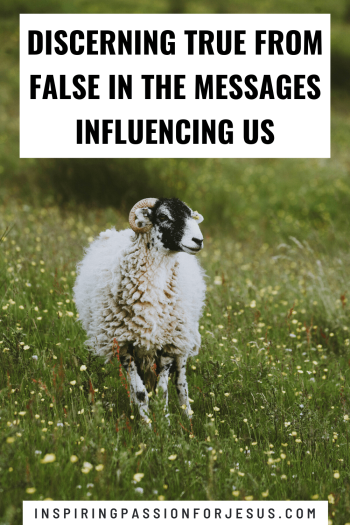 Discerning True From False in the Messages Influencing Us
